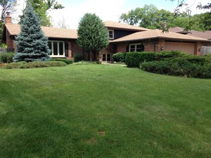 353 Woodlane Court Wood Dale, IL MLS# 08667336