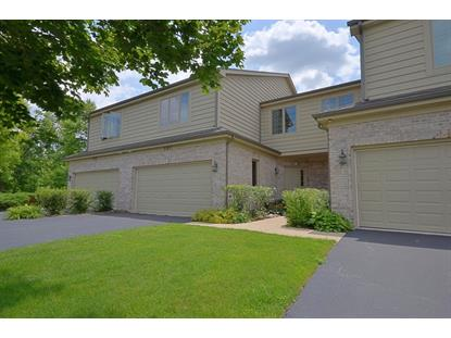 201 Winding Trails Drive Willow Springs, IL MLS# 08669619