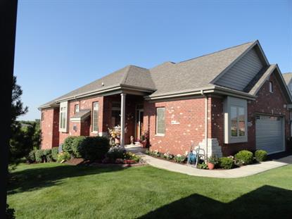 20513 Oak Court Frankfort, IL MLS# 08670075