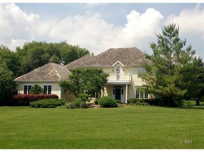 20856 N Swansway Road Deer Park, IL MLS# 08672983