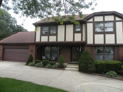 286 Thrasher Street Bloomingdale, IL MLS# 08674283