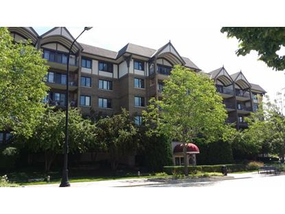 15 S Pine Street Mount Prospect, IL MLS# 08675732