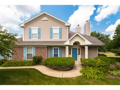 115 MILLERS CROSSING  Itasca, IL MLS# 08687464