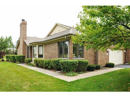10536 Brookridge Court Frankfort, IL MLS# 08691445
