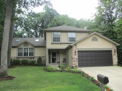 1131 Oak Ridge Drive Streamwood, IL MLS# 08693786