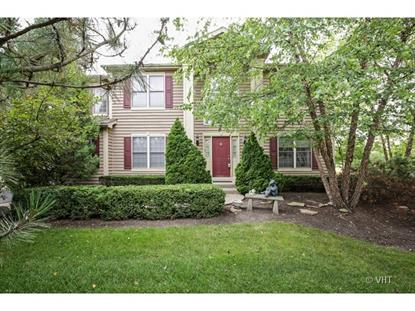 611 Long Cove Drive Lake in the Hills, IL MLS# 08712006