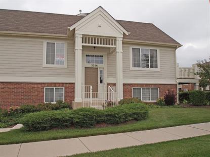 3356 Cameron Drive Elgin, IL MLS# 08713173