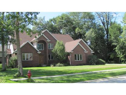 1036 Forest View Drive Morris, IL MLS# 08719223