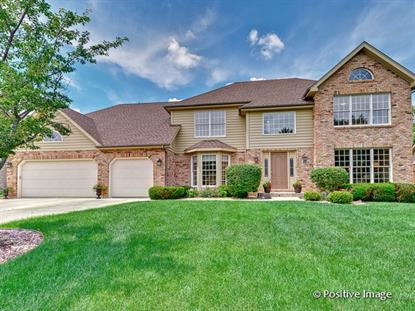 8804 LAKE RIDGE Drive Darien, IL MLS# 08720808