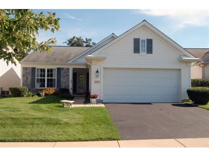 13411 CRESTVIEW Drive Huntley, IL MLS# 08724119