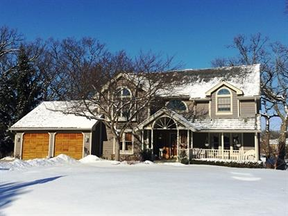 1587 Far Hills Drive Bartlett, IL MLS# 08724395