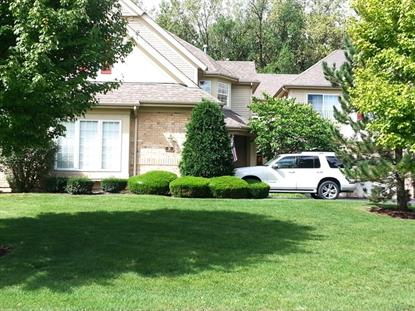 31 SPYGLASS Circle Palos Heights, IL MLS# 08728668
