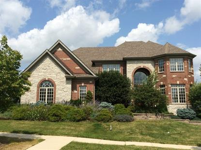 3671 Peregrine Way Elgin, IL MLS# 08739741