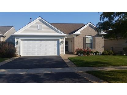 13510 Honeysuckle Drive Huntley, IL MLS# 08740057