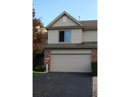 8249 Chestnut Court Frankfort, IL MLS# 08743557