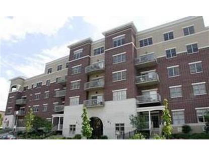 965 Rogers Street Downers Grove, IL MLS# 08744248