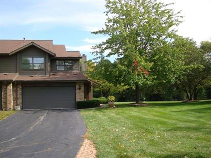 8093 Wildwood Lane Darien, IL MLS# 08745117