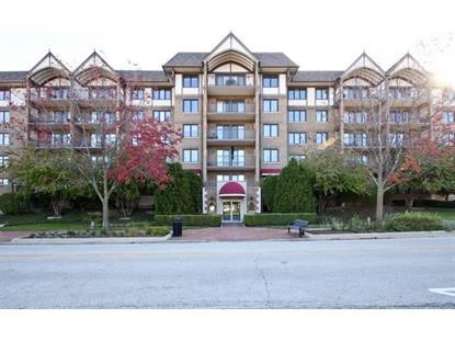 15 S Pine Street Mount Prospect, IL MLS# 08746318