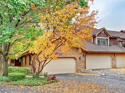 1020 Braemoor Drive Downers Grove, IL MLS# 08748497
