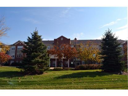 12950 Meadow View Court Huntley, IL MLS# 08754944