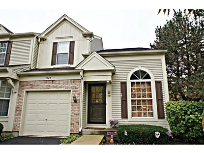 1925 Hastings Avenue Downers Grove, IL MLS# 08756323