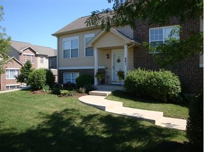 641 E Willow Street Elburn, IL MLS# 08761195