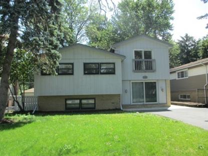 131 N Elmwood Avenue Wood Dale, IL MLS# 08762089