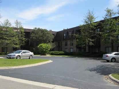 1 CT OF HARBORSIDE Drive Northbrook, IL MLS# 08766625