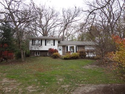546 Wilmette Avenue Carpentersville, IL MLS# 08771579