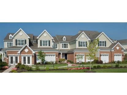 1173 Falcon Ridge Drive Elgin, IL MLS# 08786781