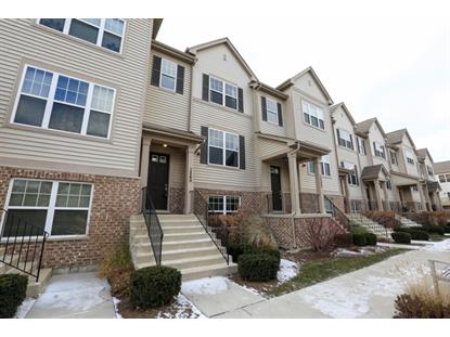 1240 Evergreen Avenue Des Plaines, IL MLS# 08788972