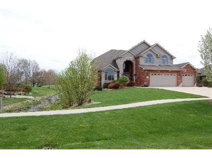 3425 W NETTLE CREEK Drive Morris, IL MLS# 08798095