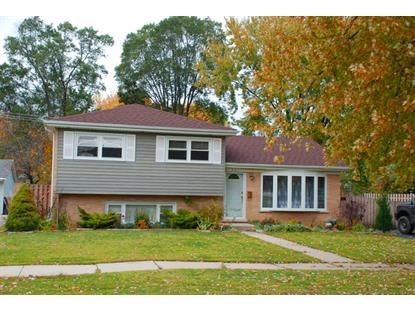 461 Forest Preserve Drive Wood Dale, IL MLS# 08800560