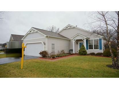 13321 WINDY PRAIRIE Drive Huntley, IL MLS# 08803386