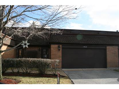 1417 Woodhollow Drive Flossmoor, IL MLS# 08805653