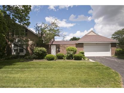 974 DARTMOUTH Drive Wheaton, IL MLS# 08808030