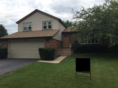 124 Norman Court Schaumburg, IL MLS# 08811525