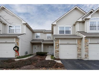 8143 Sierra Woods Lane Carpentersville, IL MLS# 08812424