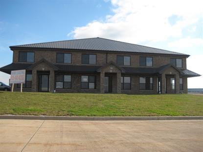 118 SERENA Court Minooka, IL 60447 MLS# 08812428