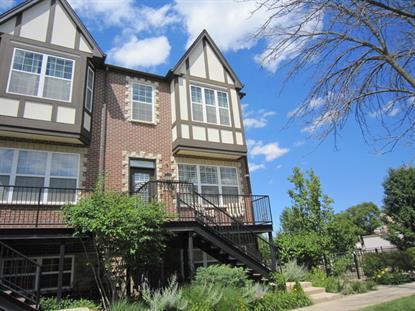 248 E Kenilworth Avenue Villa Park, IL MLS# 08814239