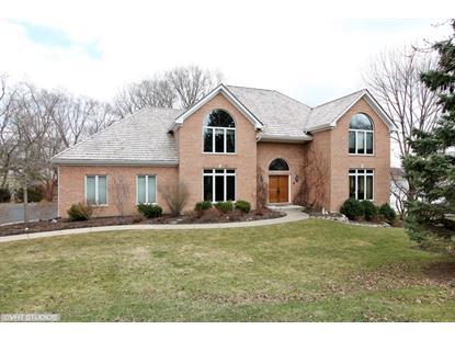 22888 W Fox Chase Road Deer Park, IL MLS# 08817683