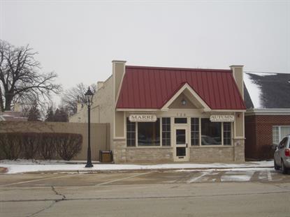 120 W Bartlett Avenue Bartlett, IL MLS# 08825805