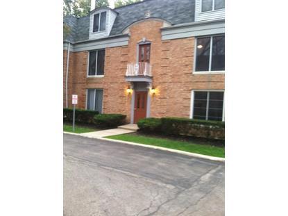1487 SHERMER Road Northbrook, IL MLS# 08826665