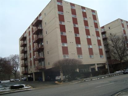 1029 DES PLAINES Avenue Forest Park, IL MLS# 08827215
