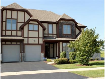 12718 Wild Rye Court Plainfield, IL MLS# 08833339