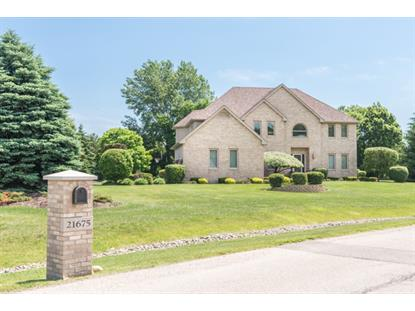 21675 Inglenook Lane Deer Park, IL MLS# 08839548