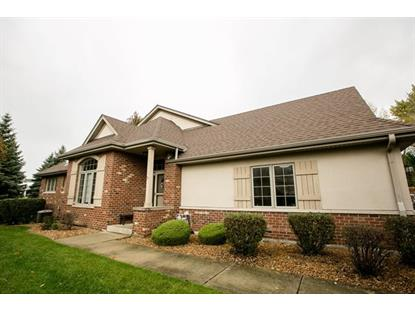 10924 SETTLERS POND Court Frankfort, IL MLS# 08845984