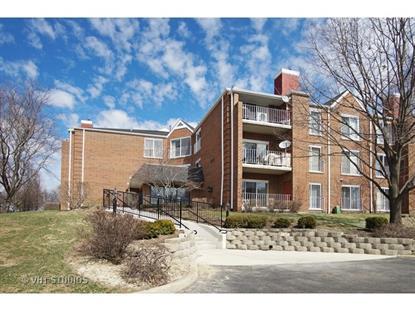 805 Leicester Road Elk Grove Village, IL MLS# 08849045