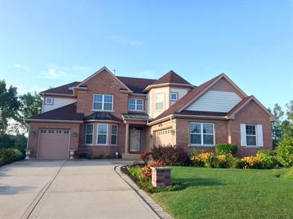 1389 Greco Road Schaumburg, IL MLS# 08851409