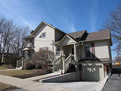 320 W Main Street Barrington, IL 60010 MLS# 08852233